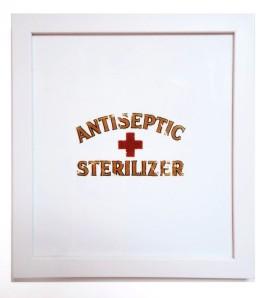 Antiseptic Sterilizer
